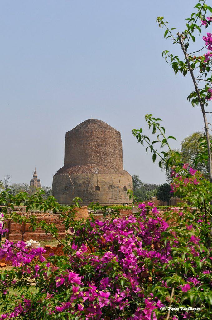 Stupa de Sarnath