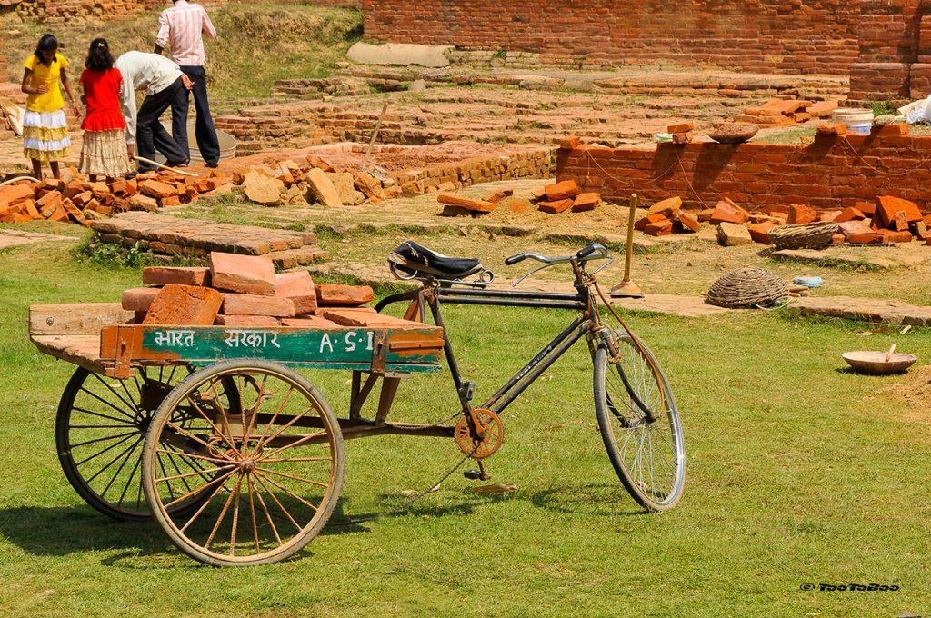 Pas de tractopelle à Sarnath